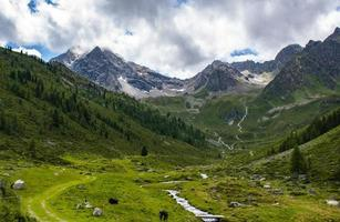 vallée verte au tyrol photo