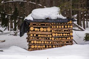 tas de bois recouvert de neige photo