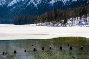 lac alpin dans les bois photo