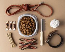 Accessoires pour animaux encore la vie avec bol de nourriture et friandises photo