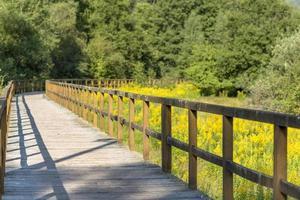pont en bois sur un champ avec prairie et collines boisées photo