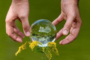 Une main d'homme atteint pour un globe en verre avec un lac en miroir les arbres et le ciel sur un fond vert photo