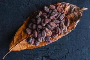 fèves de cacao séchées sur feuilles de cacao photo