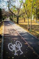 pistes cyclables dans le parc de timisoara photo