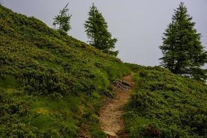 chemin entre les sommets du lagorai photo