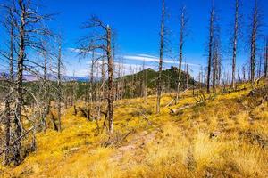 Chemin sur le parc chautauqua à Boulder, Colorado photo