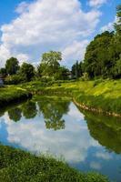 rivière et arbres photo