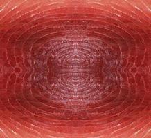 filet de saumon cru photo