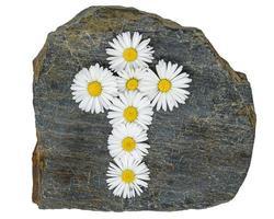 Croix chrétienne faite de fleurs de marguerite blanche jaune sur une plaque d'ardoise grise photo