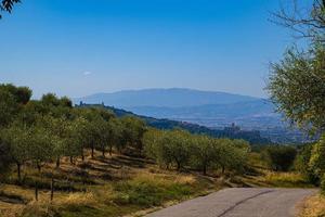 vue panoramique de la basilique d'assise photo