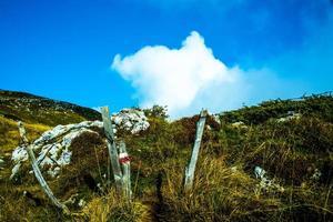 sentier avec des nuages photo