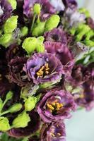 bouquet de fleurs eustoma photo