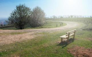 Banc en bois vide dans le parc du printemps avec un chemin photo