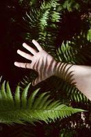 main faisant des gestes dans l'ombre photo