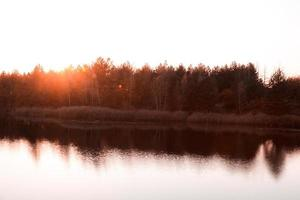 belle forêt d'automne au coucher du soleil photo