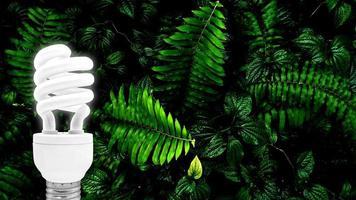 ampoule fluorescente sur fond de feuilles vertes tropicales photo