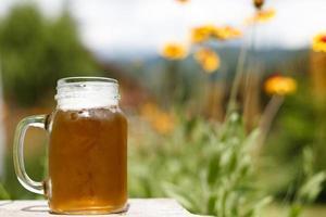 bière et nature photo