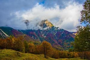 feuillage et montagnes six photo
