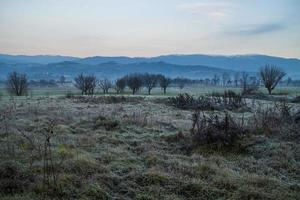 arbres des champs et montagnes photo