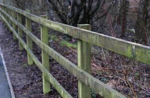 clôture en bois avec de la mousse verte dessus photo