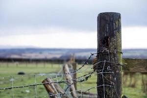 poteau de clôture sous la pluie photo