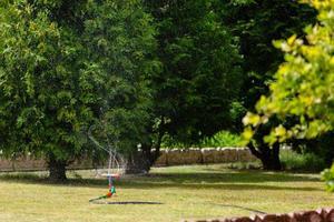 arrosage de l'herbe d'arrosage de jardin photo