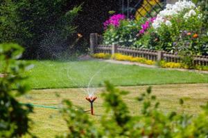 arroseur de jardin arrosage de l'herbe et des fleurs photo