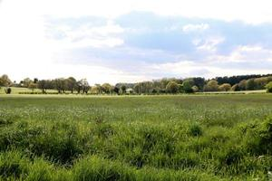 champs agricoles en angleterre photo