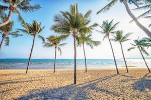 belle plage en thailande photo