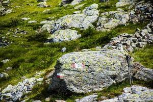 rochers et herbe photo