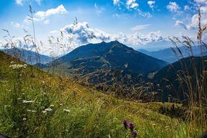 champ et montagnes photo