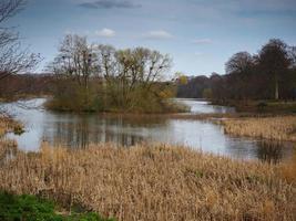 Lac et île avec une héronnière dans l'ouest du Yorkshire en Angleterre photo
