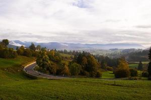 route à travers un paysage forestier photo