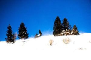 ciel bleu sur un paysage enneigé photo