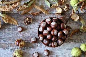 châtaignes et buckeyes dans l'humeur d'automne photo