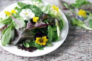 mélange de salade avec des fleurs sur une plaque blanche photo