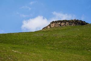 plateau et verte prairie photo