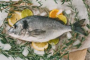 dorade sur glace et plaque à pâtisserie avec romarin, citron, orange et citron vert. orata frais, poisson dorade sur table de cuisine. photo