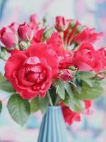 bouquet de roses rouges photo