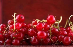 groseille rouge été frais goût sain fruits de jardin crus photo