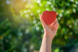 les mains des femmes sont en forme de coeur avec la lumière du soleil passant à travers les mains photo