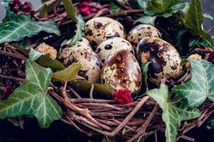 oeufs de pâques avec décoration.oeufs de caille dans un nid d'oiseau. photo