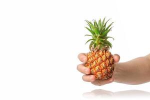 bébé ananas dans la main masculine humaine, isolé sur fond blanc. photo