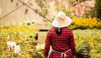 arrière d'une heureuse agricultrice avec une tablette à la main travaillant dans la serre. technologie moderne pour les agriculteurs et la floriculture. photo