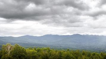 paysage avec arbres et montagnes photo