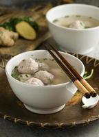 le délicieux arrangement de bols bakso photo