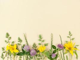 variété de fleurs sauvages sur fond beige avec espace de copie. photo