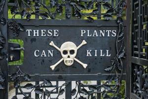 Entrée du jardin d'Alnwick dans le jardin du poison au château d'Alnwick, Royaume-Uni photo