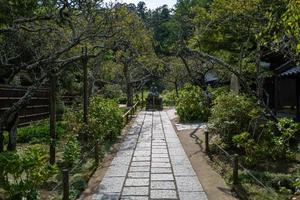 un jardin à kamakura au japon photo