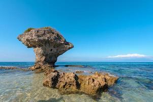 Vase à fleurs roche de corail à l'île de Lamay à Taïwan photo